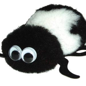 Beetle 0951