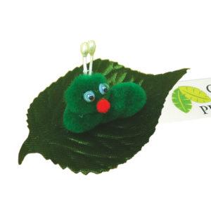 Leafy Caterpillar 0857