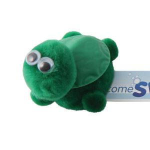 Turtle 0925